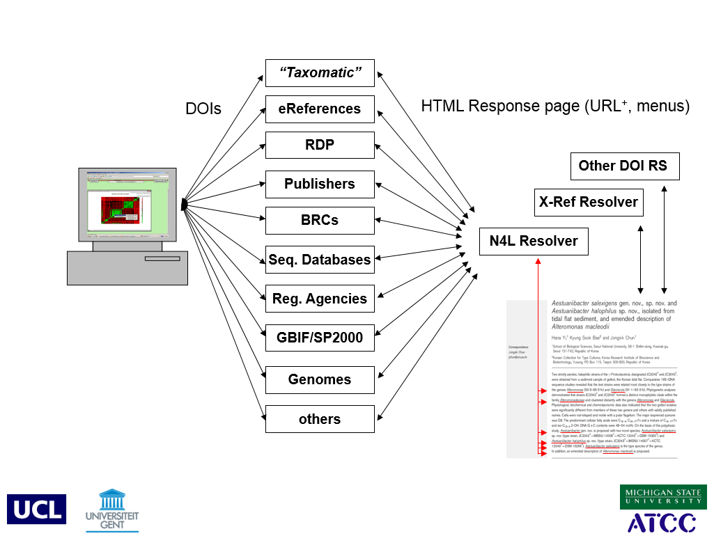 The N4L model provides a means of visualizing and linking to other data in a biological context.