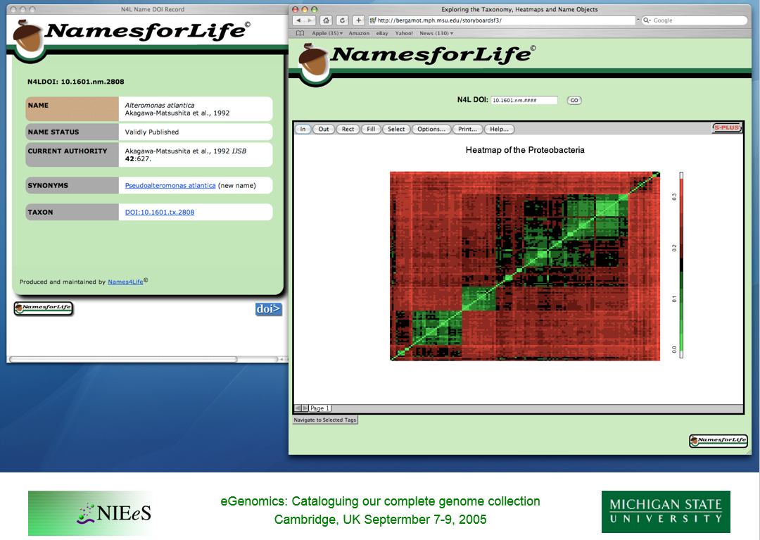 Proof-of-concept screenshots of the NamesforLife Information Architecture end points.